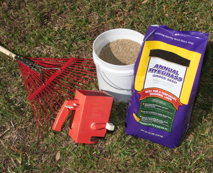 10 reasons not to plant a winterlawn